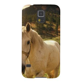 Häst Galaxy S5 Fodral