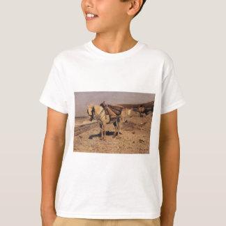 Häst för stenarna som samlar i velana tröjor