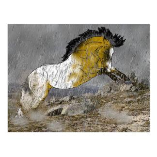 Häst för vildhjortläderAppaloosa Vykort