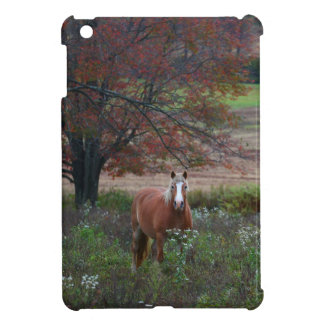 Häst i ett fält iPad mini skydd