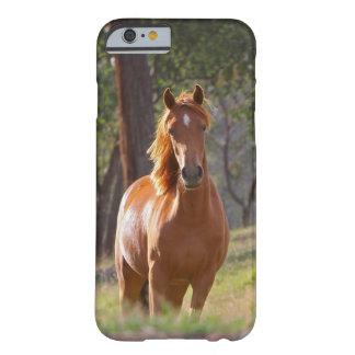 Häst i skogen barely there iPhone 6 skal