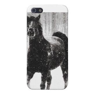 Häst i vinter iPhone 5 hud