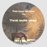 Häst i vinterbokägarmärke runda klistermärken