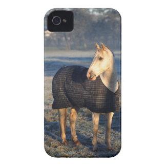 häst iPhone 4 skydd