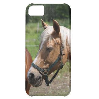 Häst iPhone 5C Fodral
