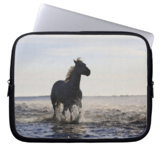 Häst Laptop Sleeve