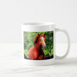 häst med ett rött lag vit mugg