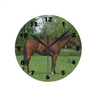 Häst Medium Rund Klocka