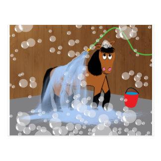 Häst som får en Bath.tif Vykort