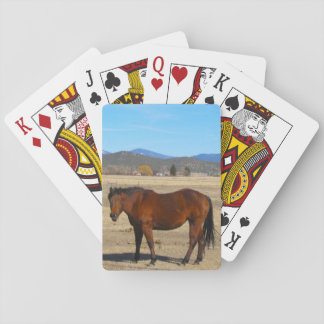 Häst som leker kort spel kort