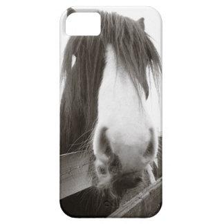 Häst som plirar över staket iPhone 5 Case-Mate skydd