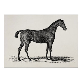 Hästar för hästkapplöpning för tävling för vintage poster