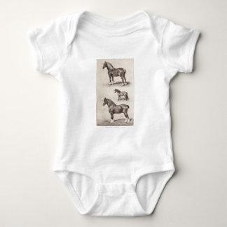 Hästar för vintagehästClydesdale Shetland belgare T Shirts