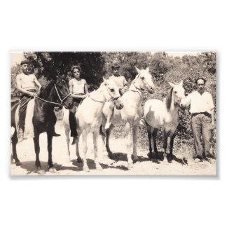 hästar gammala corfu fototryck