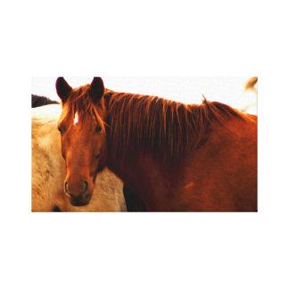 Hästar i backarna canvastryck