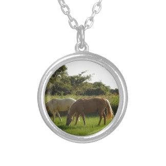 Hästar i ett fält halsband med rund hängsmycke