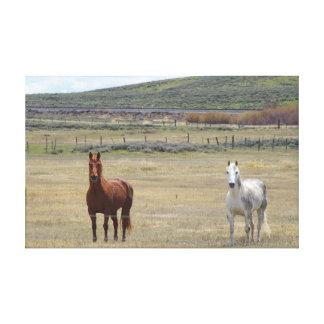 Hästar i vilden canvastryck