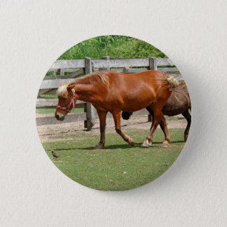 Hästar knäppas emblem standard knapp rund 5.7 cm