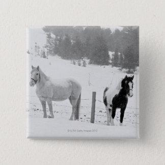 Hästar på ranch standard kanpp fyrkantig 5.1 cm