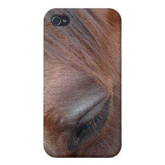 Hästar POV iPhone 4 Hud