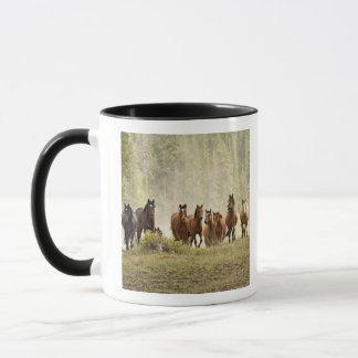 Hästar som krönar den små backen under roundup, mugg