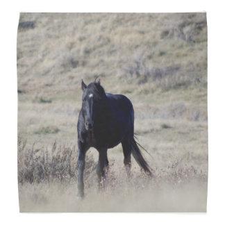 HästBandana Kerchief För Huvud