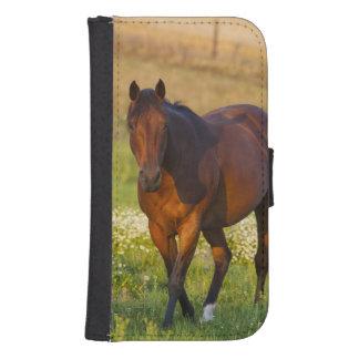 Hästen betar in nära pullmanen, Washington Plånboksfodral
