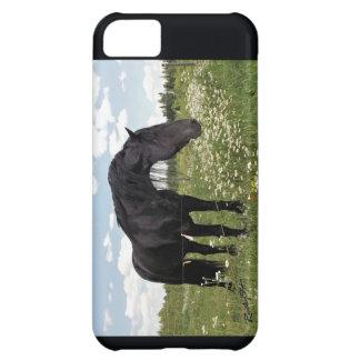 Hästen iPhone 5C Fodral