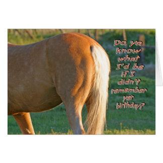 Hästfödelsedagkort--Roliga manar kort