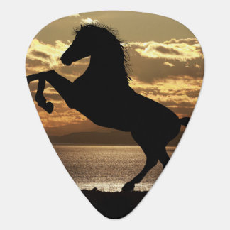 Hästgitarr Plektrum