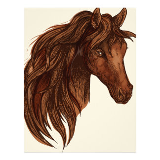 Hästhästsport Brevhuvud