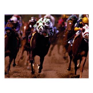 Hästkapplöpning Vykort