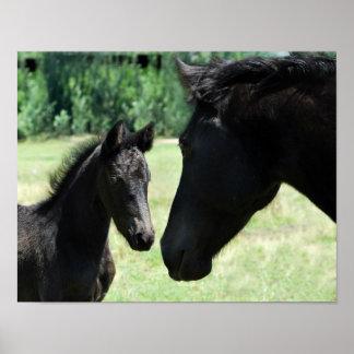 Hästkärlekmamma och bebis poster