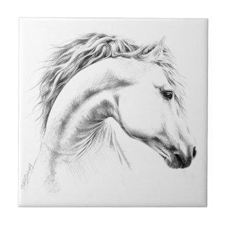 Hästporträtt ritar teckningfotoet belägger med kakelplatta