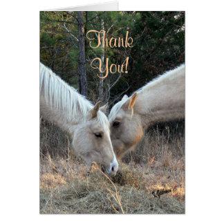 Hästtackkort Hälsningskort