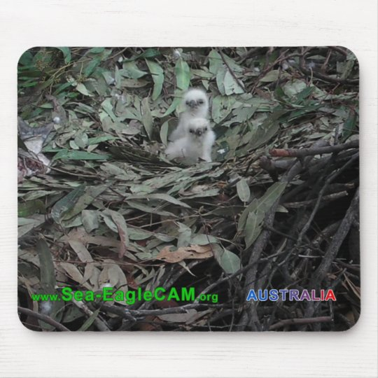 Hatchlings S1 & vågrät för S2 Mousepad Musmatta