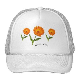 Hatt - Calendula med text Keps