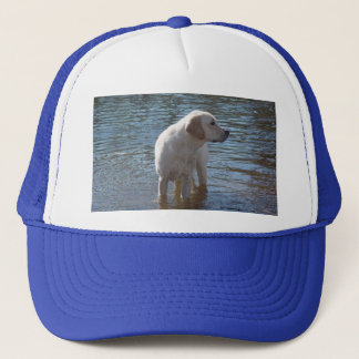 Hatt för Labrador Retriever på sjön Truckerkeps