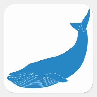 Hav för djurliv för däggdjur för blåttval marin- fyrkantigt klistermärke