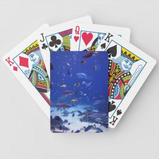 Havdjup Spelkort