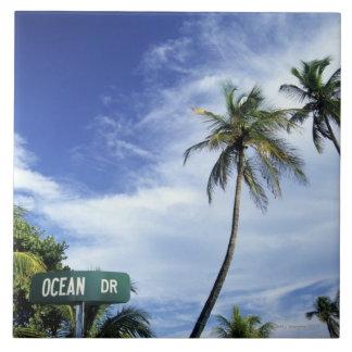 HavDrive vägmärke, södra strand, Miami som är flor Kakelplatta