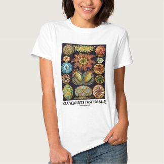 Havet sprutar (Ascidians - Artforms av naturen) T-shirts