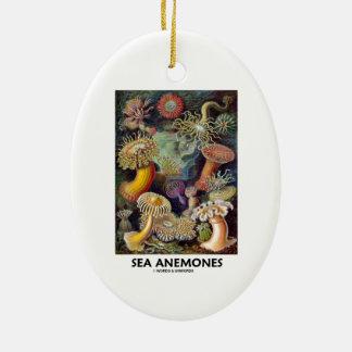 Havsanemoner Ovalformad Julgransprydnad I Keramik