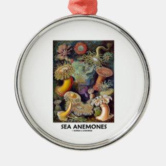 Havsanemoner Rund Silverfärgad Julgransprydnad