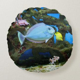 Havsblåttfisk Rund Kudde