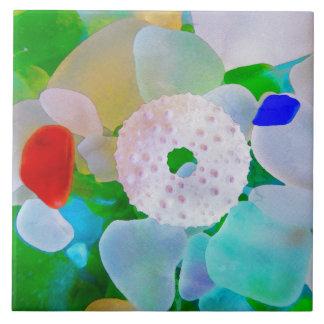 Havsexponeringsglas- och havsgatubarnsnäcka kakelplatta
