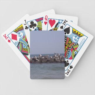 Havsfiskmåsar på havskusten spelkort