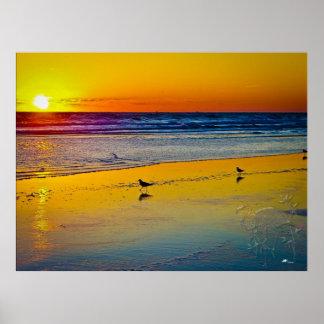 Havsoluppgången & det är reflexionen på strand & f poster