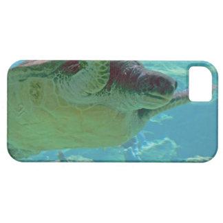 Havssköldpadda iPhone 5 Fodral