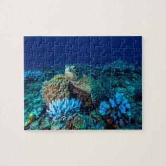 Havssköldpadda på den underbara barriärrevet pussel